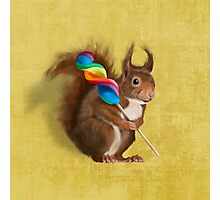 Squirrel with lollipop Photographic Print