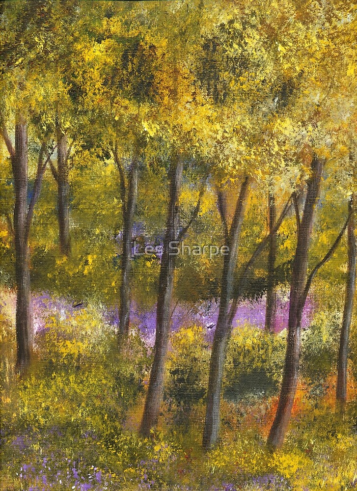 Bluebell Wood by Les Sharpe