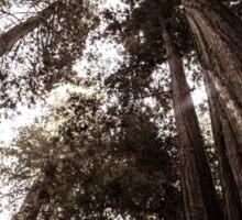 Redwood Giants Sticker