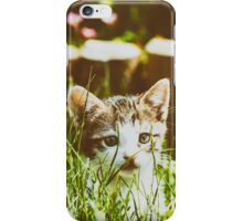 Baby Cat Playing In Grass iPhone Case/Skin
