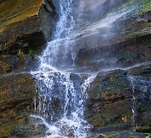 Falling Water by Gary Benson