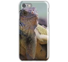 Young Adult Green Iguana iPhone Case/Skin