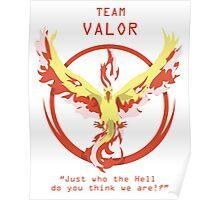 TEAM VALOR Poster