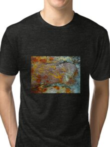 Signs from ancient times Tri-blend T-Shirt