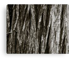 Deep Wood Canvas Print