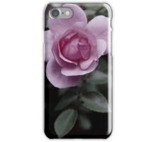 Pink Rose In Blossom iPhone Case/Skin