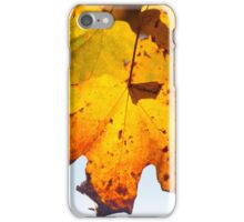 Autumn Is Ready To Fall iPhone Case/Skin