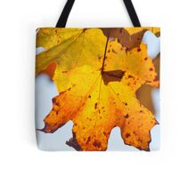 Autumn Is Ready To Fall Tote Bag