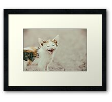 Cute Cat Meowing With A Funny Laughing Face Framed Print