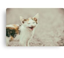 Cute Cat Meowing With A Funny Laughing Face Canvas Print