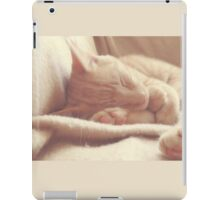 Sleeping Orange Cat - Cute & Fluffy iPad Case/Skin