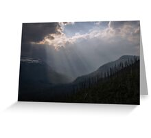 Mountain forest. Greeting Card