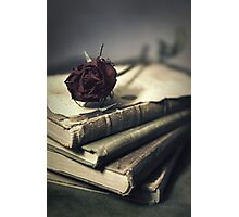 Still life with books and dry red rose Photographic Print