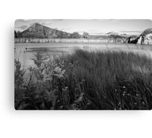 Cawfielfds Quarry and Crag Canvas Print