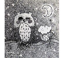 Drunken Owl Photographic Print