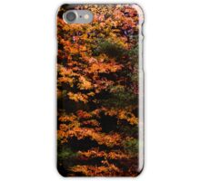 Autumn Abstract Design iPhone Case/Skin