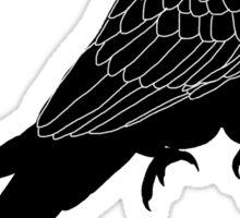 Lear's macaw tear Sticker