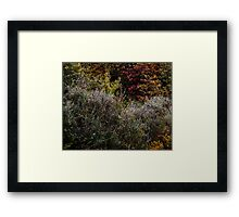 Abstract In Nature's Fall Framed Print