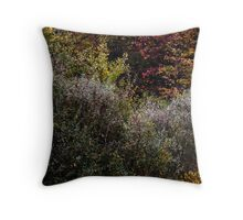 Abstract In Nature's Fall Throw Pillow