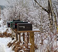 Mailboxes by Gary Benson