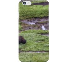 Rainy Day Grazing iPhone Case/Skin
