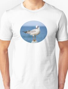 Coquettish little sea-gull Unisex T-Shirt