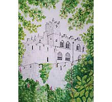 Castle Through the Trees Photographic Print