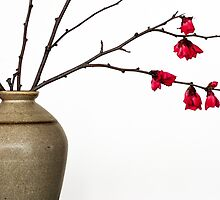 Vase With Japonica by prbimages
