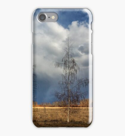 Barn Storm iPhone Case/Skin
