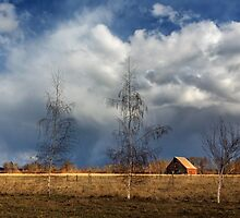 Barn Storm by James Eddy