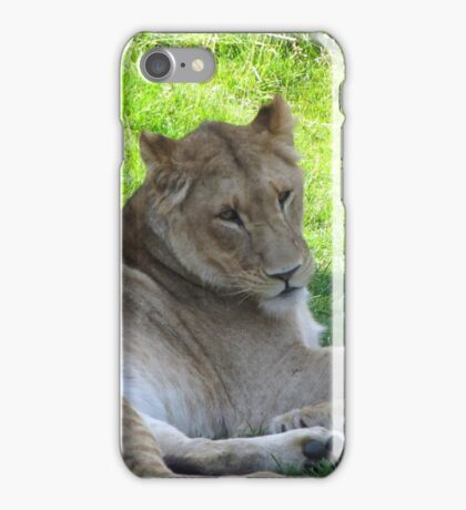 Lion gifts iPhone Case/Skin