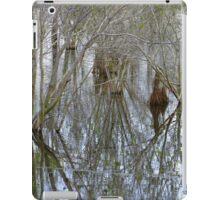 Pond Reflections iPad Case/Skin