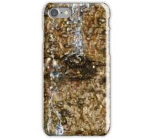 Wood Bark and Sap Stains iPhone Case/Skin