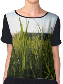 In the grass Chiffon Top