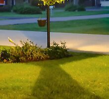 FRONT YARD LAMP POST by pjm286