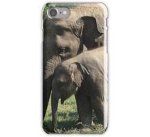 Elephant Love 2 iPhone Case/Skin