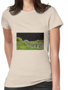 Neon Fence Womens Fitted T-Shirt
