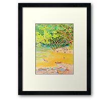 Creek Mouth, Port Douglas Framed Print