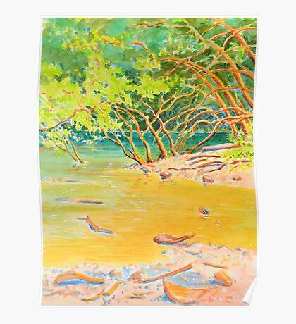 Creek Mouth, Port Douglas Poster