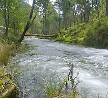 Buckland River by ndarby1