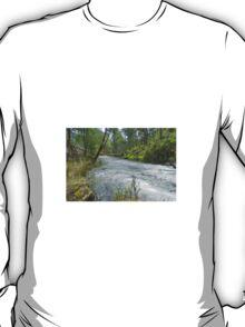 Buckland River T-Shirt