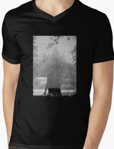 Grouper Ruins Mens V-Neck T-Shirt
