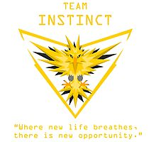 Pokemon GO Team Instinct Photographic Print