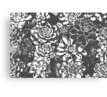 Garden of Stone Canvas Print