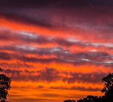 Warrandyte Sunset X by Adam Le Good