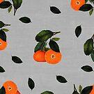 oranges by beverlylefevre