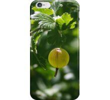 Ripe gooseberries iPhone Case/Skin