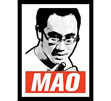 The Mao Point - Evolution 2014 Photographic Print