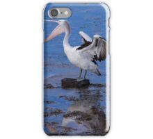 Pelican Fight iPhone Case/Skin
