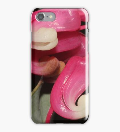 Grevillea insignis iPhone Case/Skin